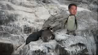 24歳、ペンギンです.mp4