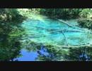 【癒し系】 神の子池② 北海道 癒し 【自然音】