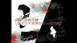 【Say✩】影踏みエトランゼ【歌ってみた】