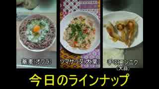 【ニコニコ夏野菜料理祭】麺と野菜と鶏肉