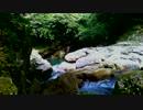 【癒し系BGM】 加江田渓谷② 【自然音】