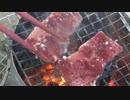 【野外ご飯】 焼肉に挑戦した日のこと 【タレか塩か】