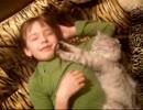 少年の顔を揉む猫
