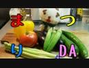 【メガネ食堂】 夏野菜おつまみ3種 【夏野菜料理祭】