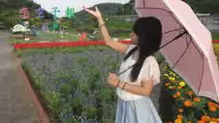 【梅雨明けの夕日の下で*】恋空予報  踊