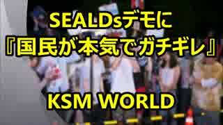 【KSM】SEALDsデモに『国民が本気でガチギ