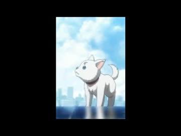 銀魂゜】最後までⅡ/Aqua Timez【歌ってみた】 - ニコニコ動画