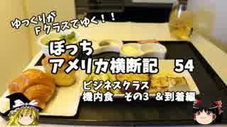 【ゆっくり】アメリカ横断記54 ビジネスクラス 機内食 その3