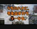 【WoT】ゆっくり金剛と温泉卵の戦車戦37【T71】