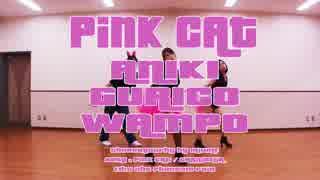 【兄貴・ぐり子・ワンポ】PiNK CATを踊ってみた【DOF団】 thumbnail