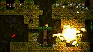 【Spelunky】 事故らんきー part9