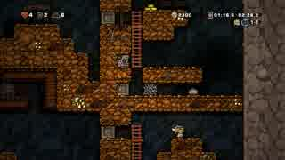 【Spelunky】 事故らんきー part11