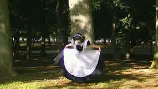 【マスクメイド】スイートマジックを踊っ