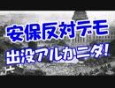 【安保反対デモ】 出没アルかニダ!