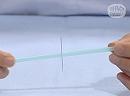 科学実験!ストローで静電気の力を調べよう!【科学でワオ!365】