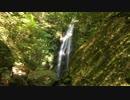 【癒し系BGM】 滝と清流⑧ 【自然音】