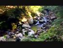 【自然音】 加江田渓谷④ 清流 【癒し系BGM】