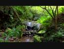 【自然音】 加江田渓谷⑤ 清流 【癒し系BGM】