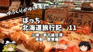 【ゆっくり】北海道旅行記 11 小樽→新千歳移動 散策編