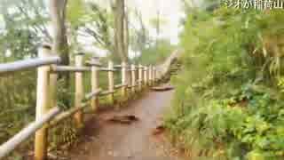 ハシケン 橋!滝!高尾山六号路を登りたい