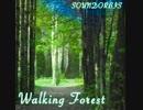 【フリーBGM】Walking Forest【切なさと希
