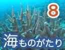 [海ものがたり] Season1.8 美ら海はサンゴの楽園 〜沖縄・石垣島〜