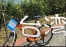 【旅行】コジマ店員のめざせ台湾!集集鉄道の旅 part.9