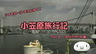 【ゆっくり】小笠原旅行記 Part3 ~おがさわら丸編~ 出航