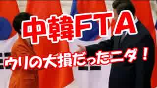 【中韓FTA】 ウリの大損だったニダ!