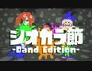 【splatoon】『シオカラ節 -Band Edition-』を歌ってみました。【松下】