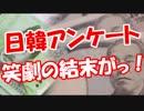 【日韓アンケート】 笑劇の結末がっ!