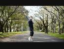 【Babo】シュガーソングとビターステップ 踊ってみた【オリジナル振付】