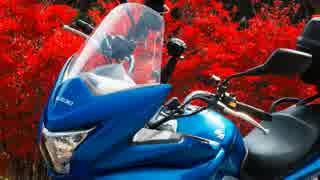 狛犬のGSR250S緩々旅~ダムツーリング編~第4回紅葉の山梨