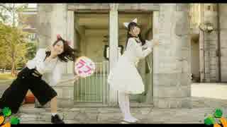 【白猫が】ニンジーンLoves you yeah!踊ってみた【オリジナル】