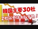 【韓国主要30社】 2社以外はキムチ色!
