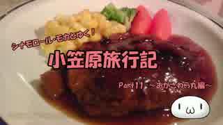 【ゆっくり】小笠原旅行記 Part11 ~おがさわら丸編~ ディナー&星空