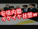 """【韓国崩壊】竹島で""""やりたい放題の韓国人""""を取り締まり開始!?"""