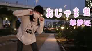 【華夢姫】おじゃま虫【踊ってみた】 thumbnail