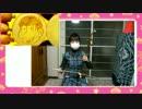 【おそ松さんED】SIX SAME FACES 今夜は最高!!!!!! 二胡で 弾いてみた