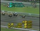 1995 中央競馬ダイジェスト