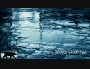 【せな⚩】rain stops,good-bye 歌ってみた⚩