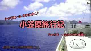 【ゆっくり】小笠原旅行記 Part14 ~おがさわら丸編~ 小笠原海域その2