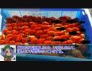 ニコニコイチゴ講座 第8回「収穫と糖度」