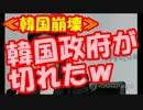 """朴槿恵大統領が""""7時間逃げずに慰安婦合意の公式見解""""を発表!!"""