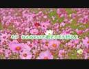 【GUMI,IA】GUMI「これ新曲? やだ」【オリジナル】