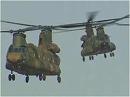 【精鋭JSDF】陸上自衛隊 第1ヘリコプター団 平成28年 年頭編隊飛行訓練[桜H28/1/6]