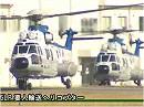 陸上自衛隊 第1ヘリコプター団 - 平成28年 年頭編隊飛行訓練