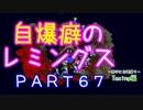 自爆癖のレミングス~勝手に自爆縛り~ PART67(Taxing編#19)