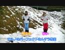 雪山でチルノ踊ってみた【転少女xぴい】
