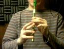 クロノトリガー「やすらぎの日々」をティンホイッスルで吹いてみた。